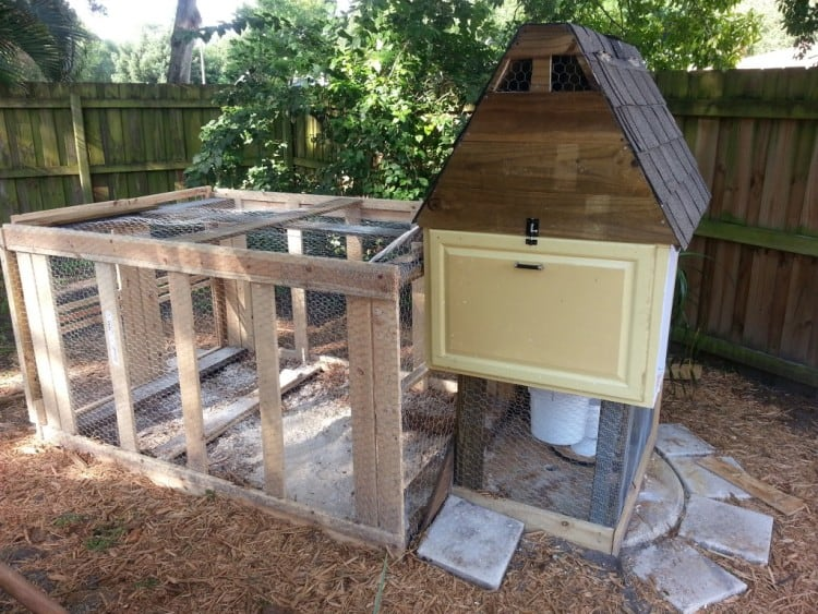 Chicken Coop for