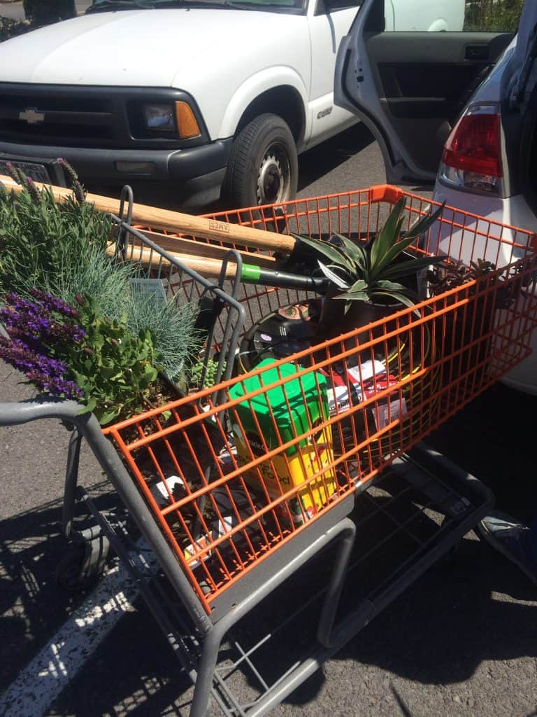 Supplies for our flower bed transformation