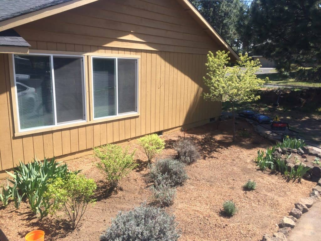 How we completely transformed our flower bed