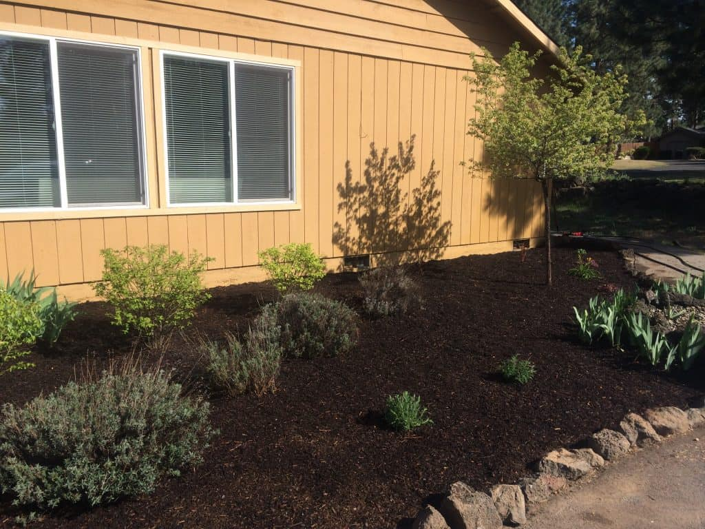 Easy DIY fix to refresh any flower bed = black mulch!