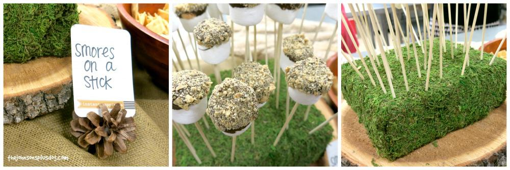 S'mores on a stick - Cute for camping theme party