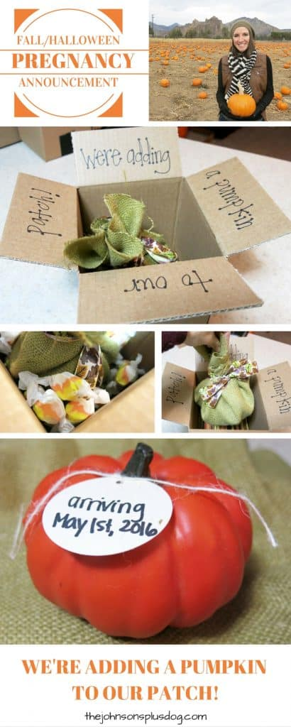 Photo collage showing a faux pumpkin with tag that says arriving May 1st, 2016 and a box holding the pumpkin to send in the mail to announce your pregnancy to parents during the Fall and Halloween season with we're adding a pumpkin to our patch