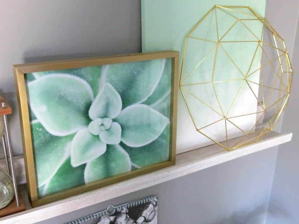Succulent print, gold geometric bowl, plain green canvas on tip of the wall hang shelves