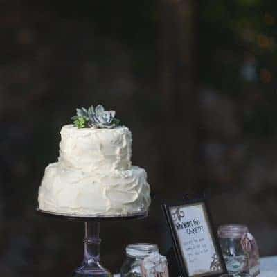 Cake table decor | the johnsons plus dog
