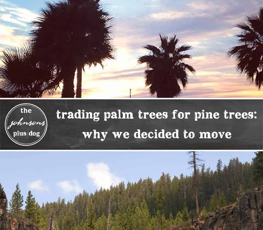 trading palm trees for pine trees | why we decided to move | the johnsons plus dog