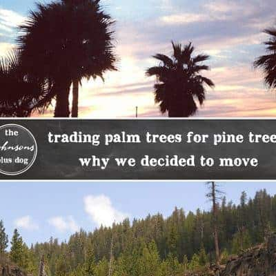 Trading Palm Trees for Pine Trees: Why We Decided to Move
