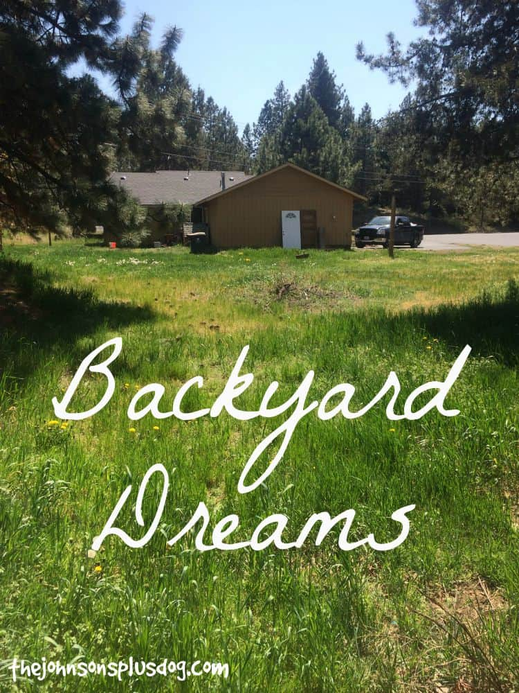 Backyard Dreams backyard dreams - making manzanita