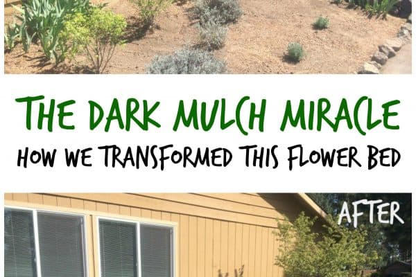 The Dark Mulch Miracle - How We Transformed This Flower Bed