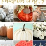 Collage of various pumpkin craft ideas with text overlay that says 20 DIY fall pumpkin crafts