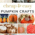 Collage of various pumpkin craft ideas with text overlay that says cheap and easy pumpkin crafts