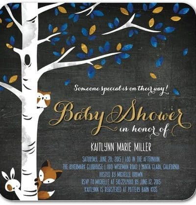 20 Rustic Baby Shower Invitations