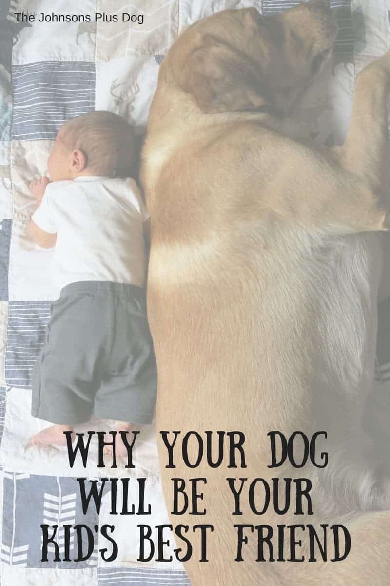 Why Your Dog Will Be Your Kid's Best Friend