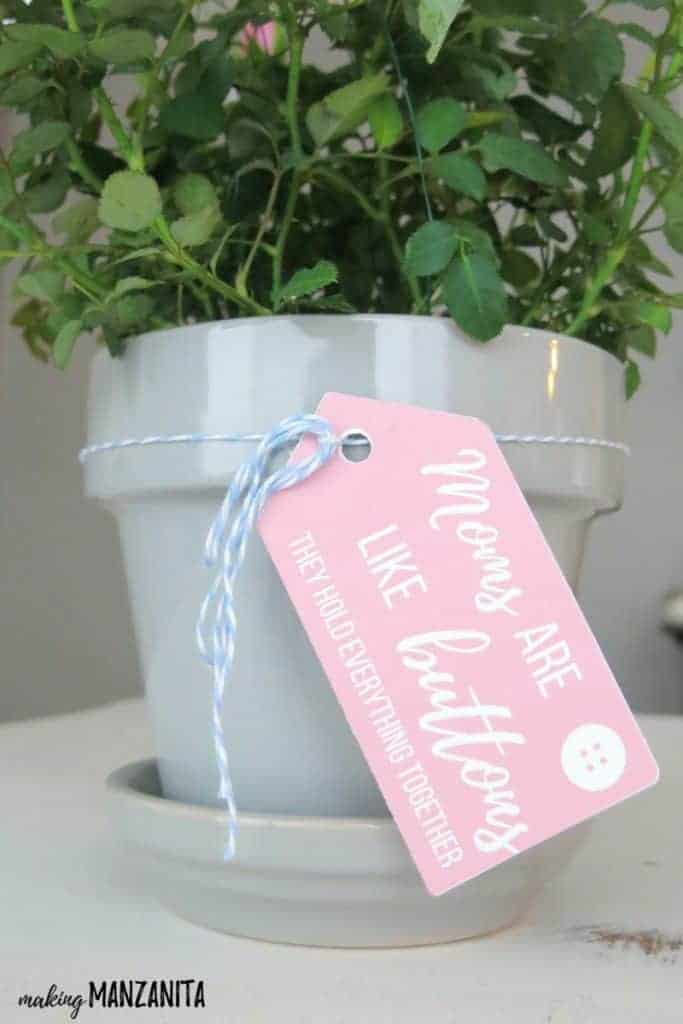 Pink gift tag that says moms are like buttons they hold everything together tied to a gray potted plant sitting on a white table