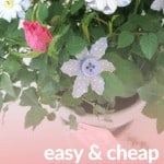 Button flowers sticking out of potted rose bush with text overlay that says easy and cheap Mother's day gift
