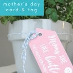 Close up of pink gift tag tied to pot of flowers that says moms are like buttons they hold everything together with text overlay that says free printable Mother's day gift idea