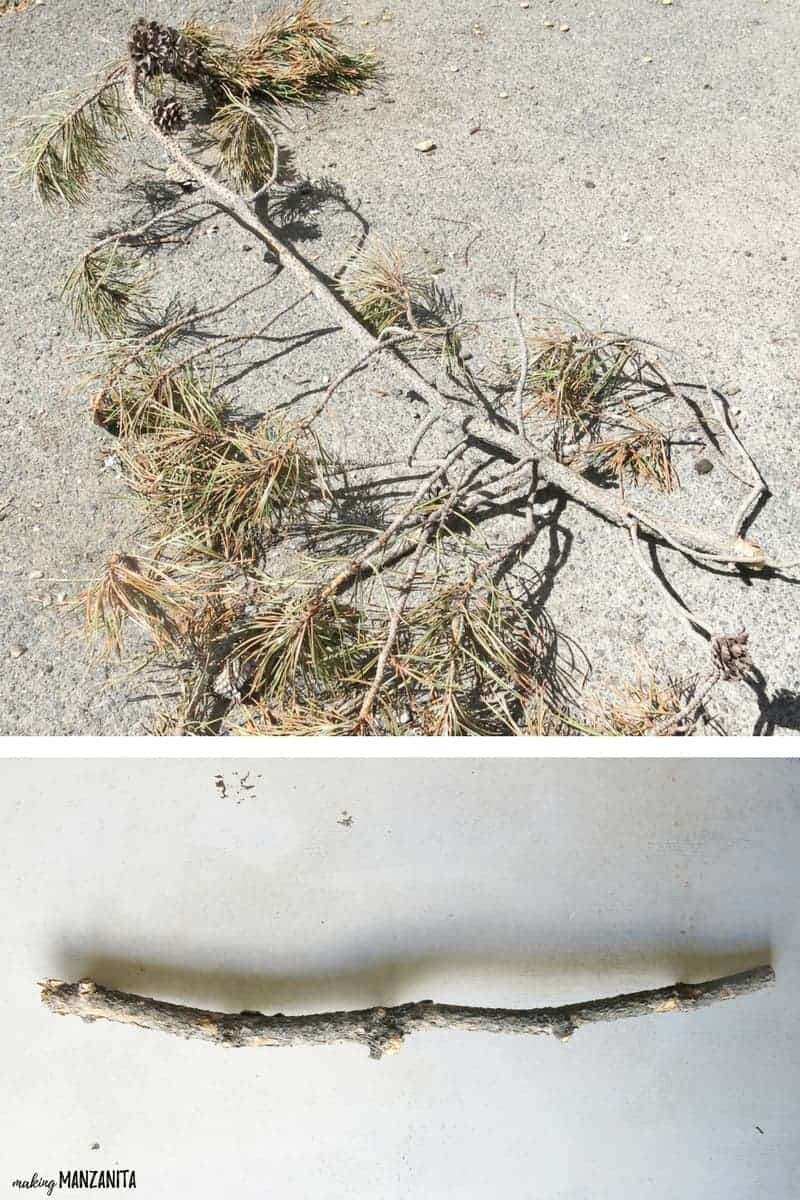 shows two different pictures of a large pine branch  laying on the ground and the other picture shows a cleaned up stick laying on concrete