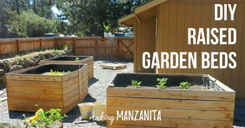 raised garden bed build with cedar fence boards in the backyard beside the house with text overlay that says DIY raised garden beds and Making Manzanita logo