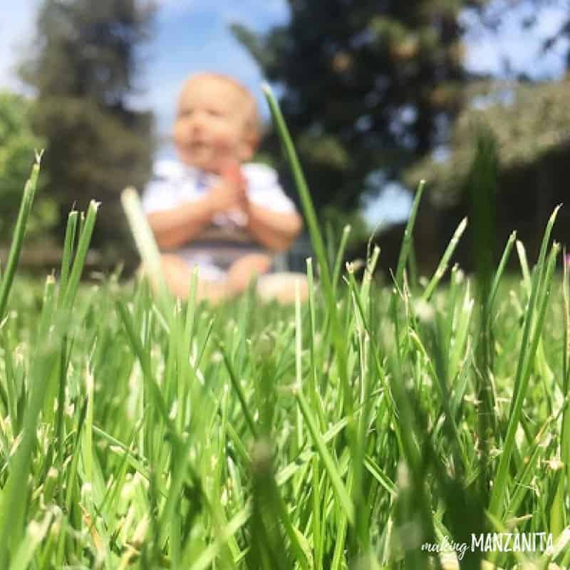 Close up photo of green grass with blurred out baby sitting in the background