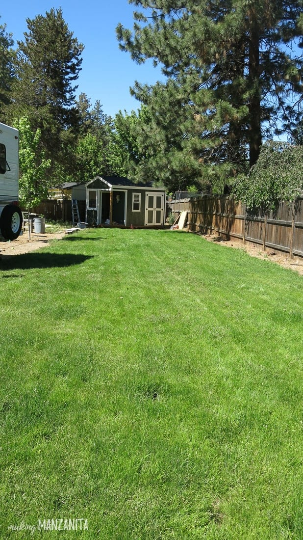 Photo of large backyard with green and white shed built in the far corner. The rest of the backyard shows a large plot of green grass.