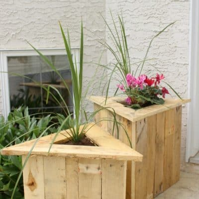 Simple Front Yard Landscaping and Curb Appeal Ideas