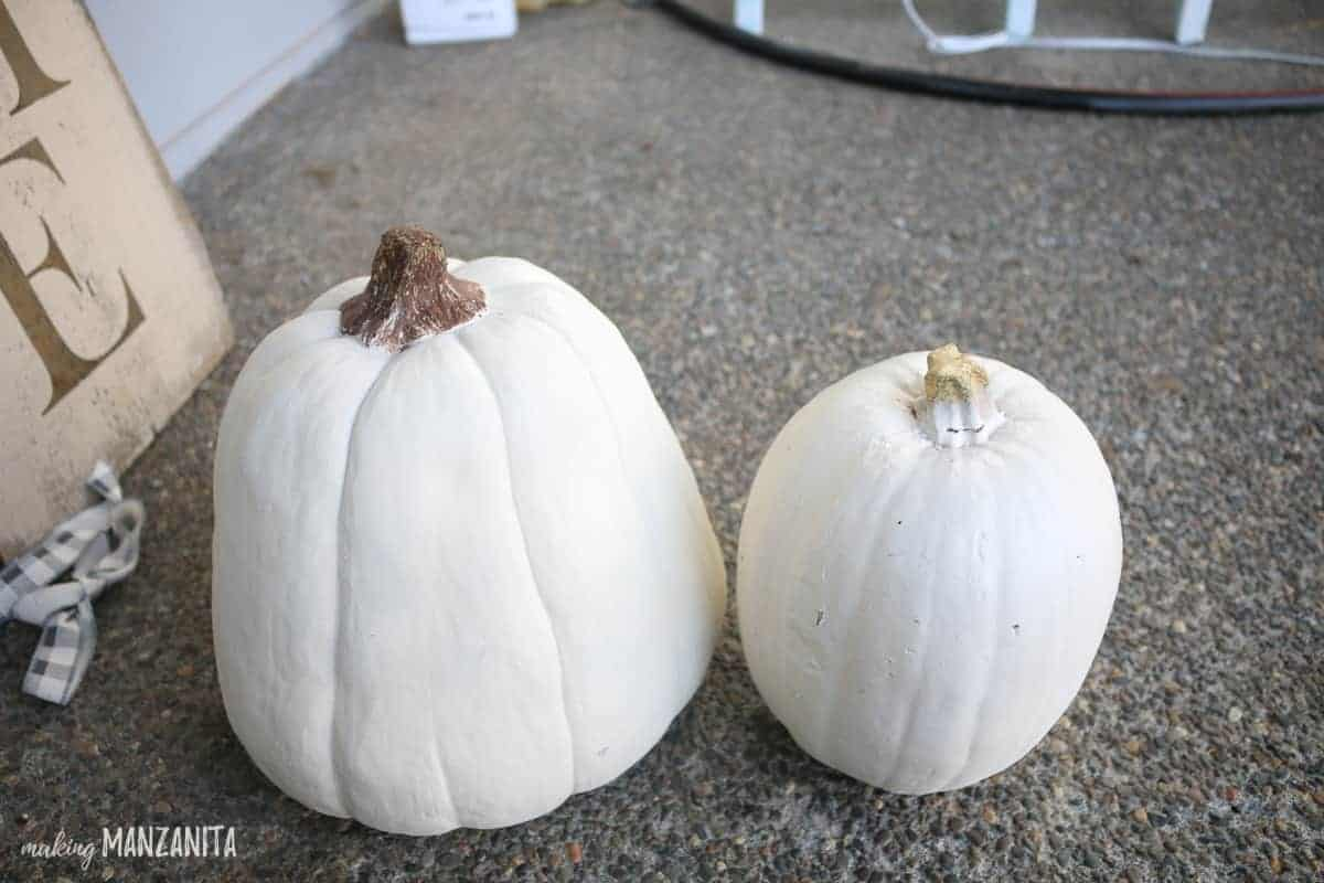 White pumpkins sitting side by side. One has brown painted stem and one stem hasn't been painted.
