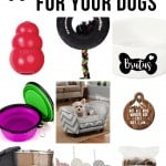 Collage of shaker, dog tie, bowl, dog cups, bed, pet ornament, dog bow tie, bow tie pillow toys, wooden sticks with text overlay that says 11 Gift Ideas For Your Dog