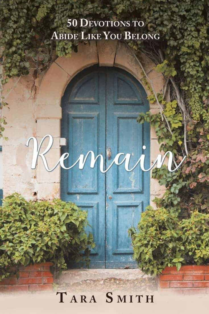 Remain Devotional Book
