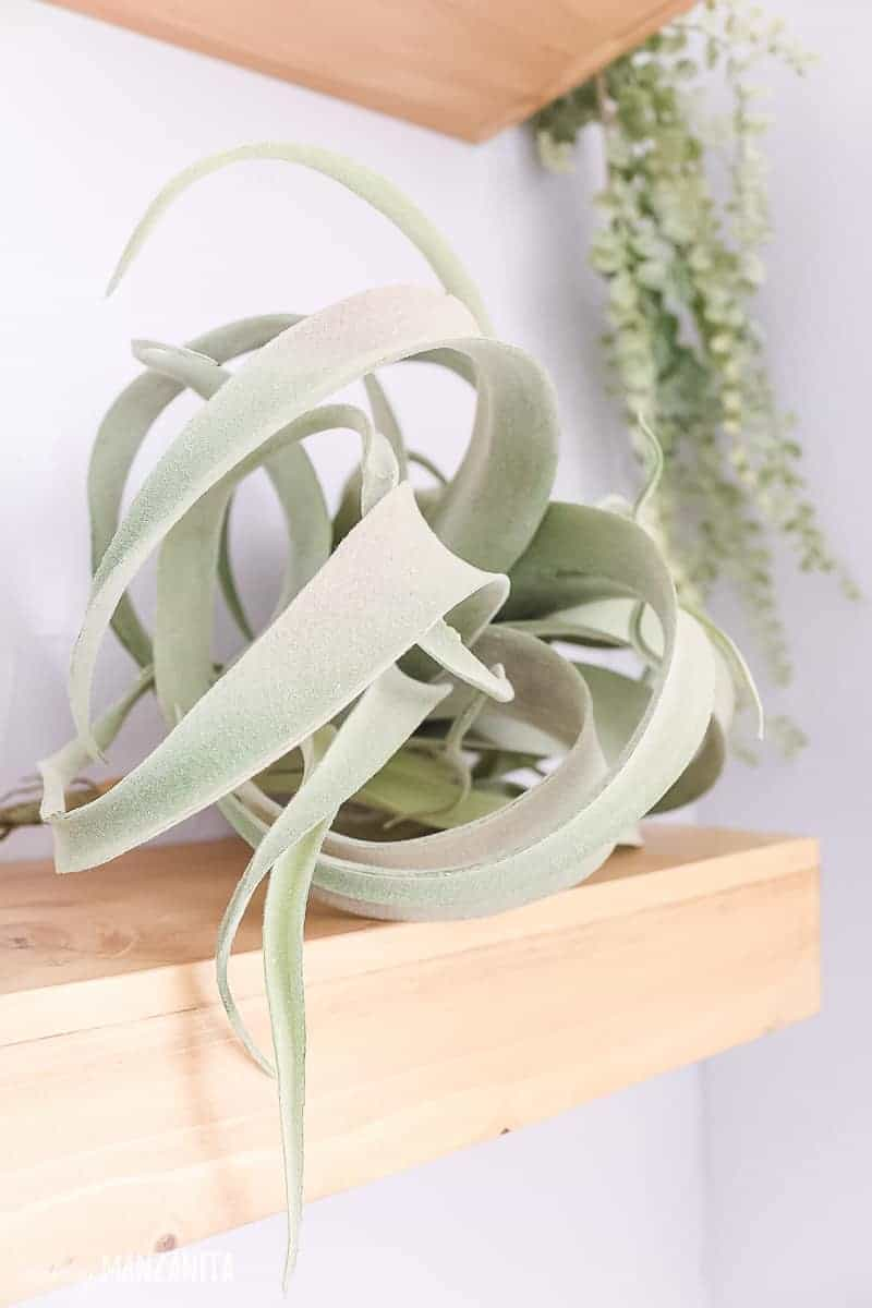 Faux airplant sitting on floating wood shelf in bathroom
