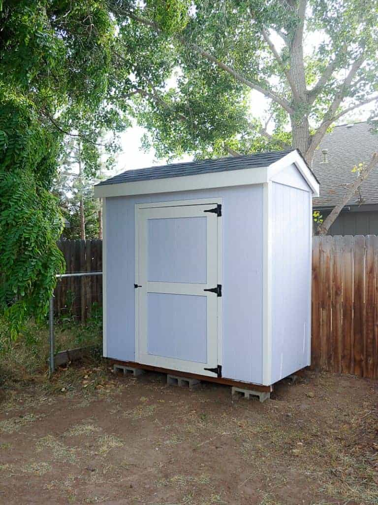 shows a picture of a light blue garden shed next to the back fence in backyard