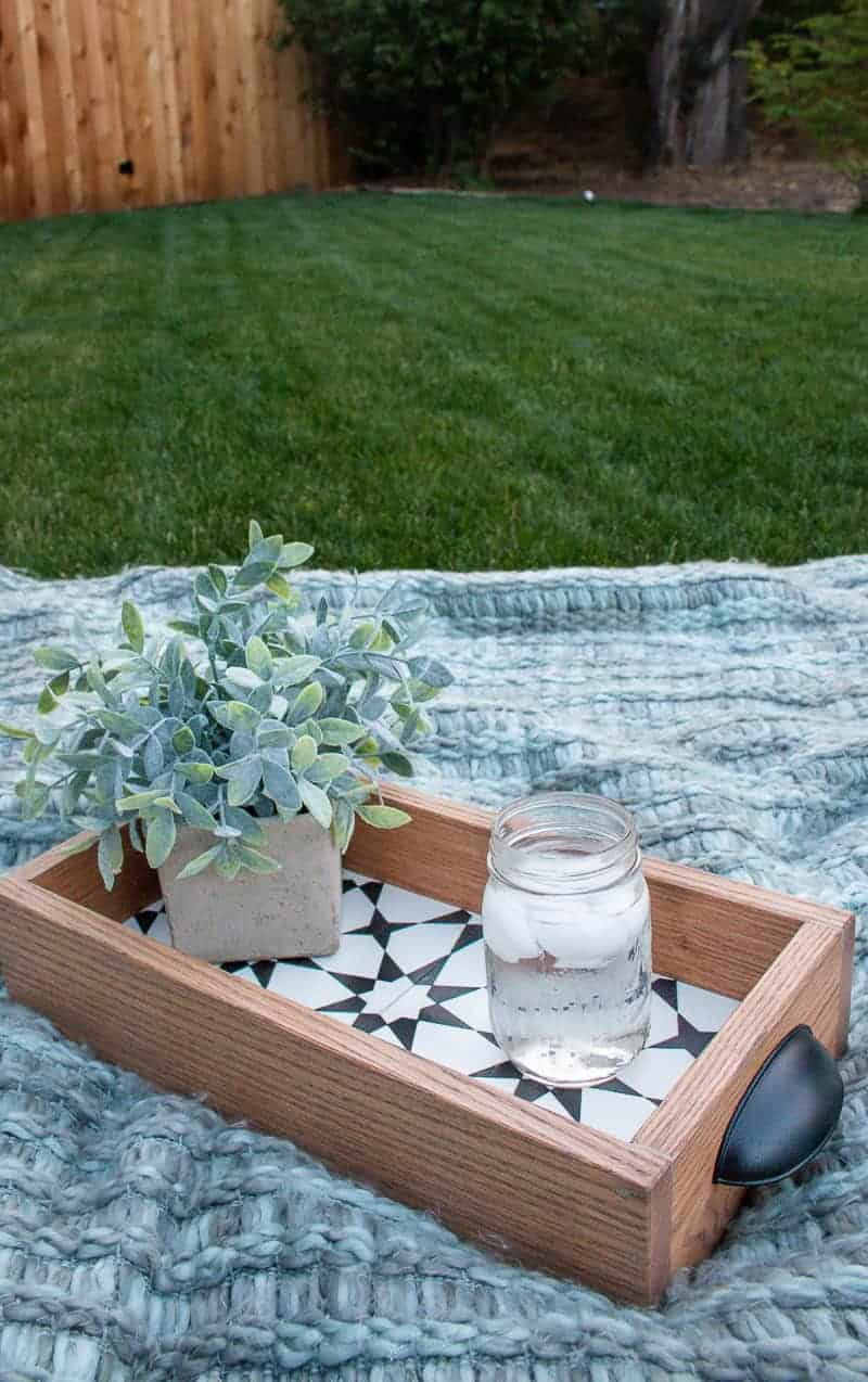 diy serving tray on the on the picnic blanket with ices water and succulent