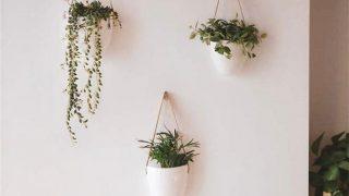 Hanging Ceramic Wall Planters