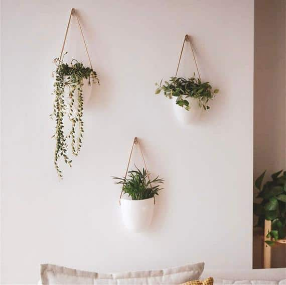 Hanging Ceramic Wall Planters