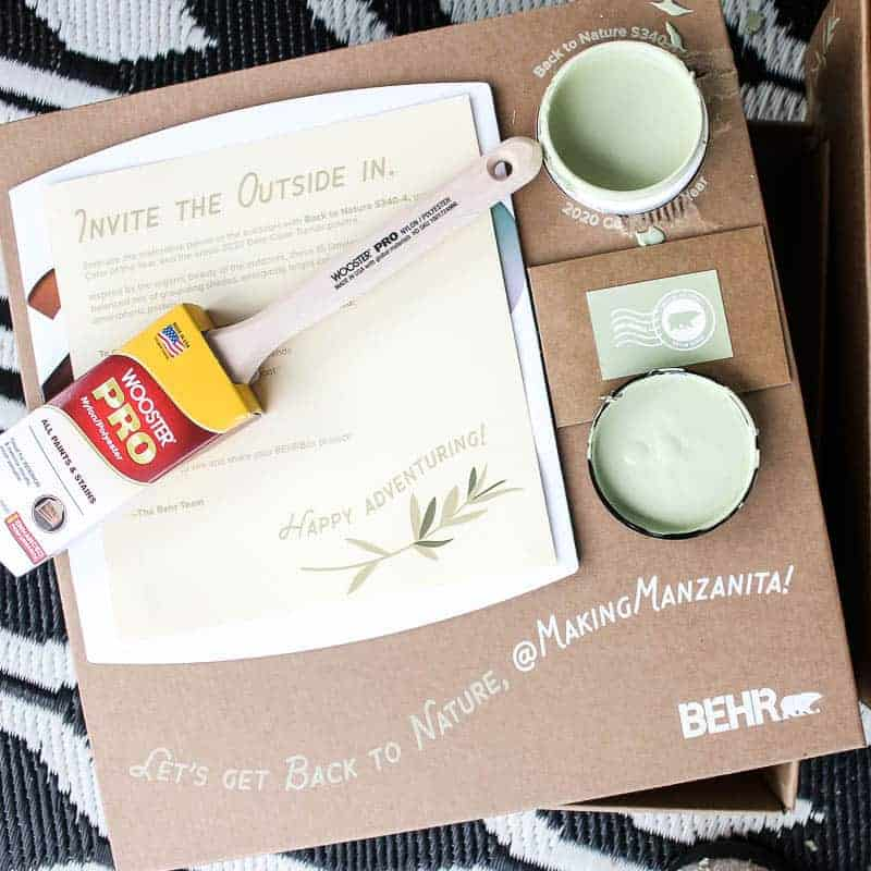 Invite The Outside In paint with a paint brush - 2020 BEHRBox