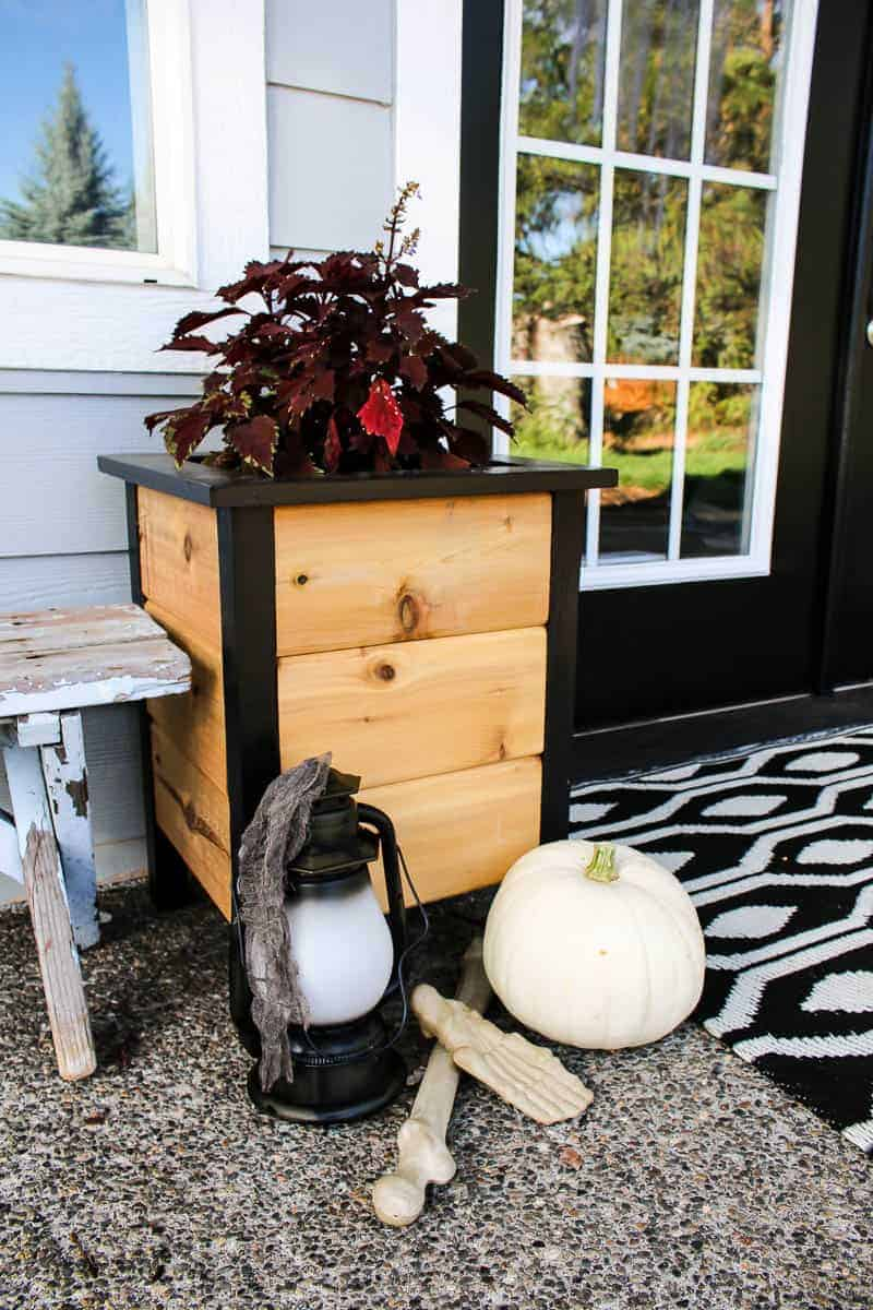 Plant box beside the lamp and pumpkin with skeleton hand for the Halloween Porch Decor