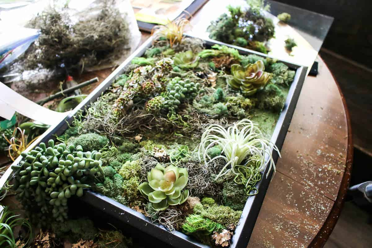 Floral foam, fake succulents and preserved moss inside the black shadow frame box