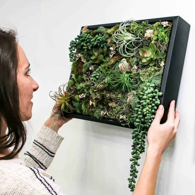 Woman placing the finished DIY fake succulent wall decor on the wall