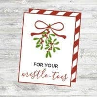 For Your Mistle-Toes Tags