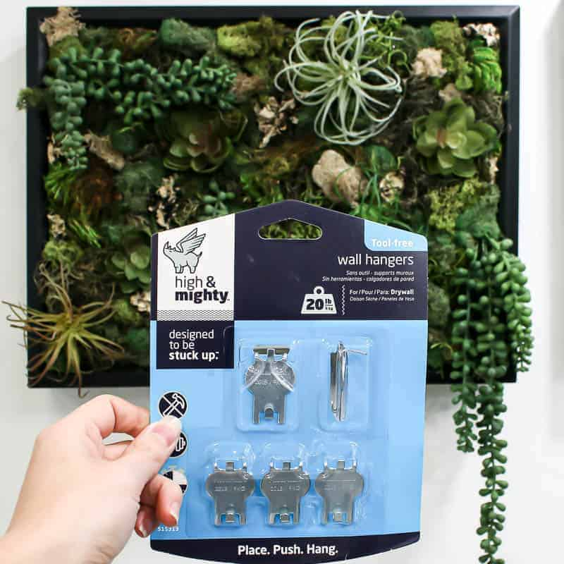 Holding a pack of High & Might wall hangers and the DIY fake succulent wall decor t the back