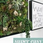 Succulents in frame with preserved moss and airplants in a black frame hanging on a white wall with text overlay that says super easy succulent wall art