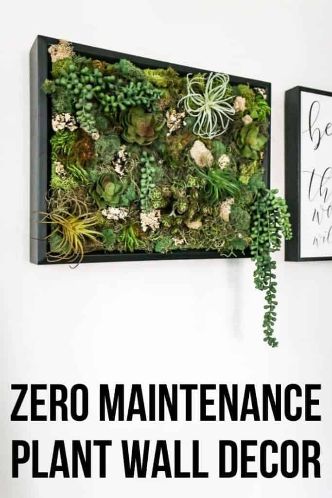 Succulent wall decor with faux succulents and preserved most in a black shadow box frame in bathroom on wall with text overlay that says zero maintenance plant wall decor