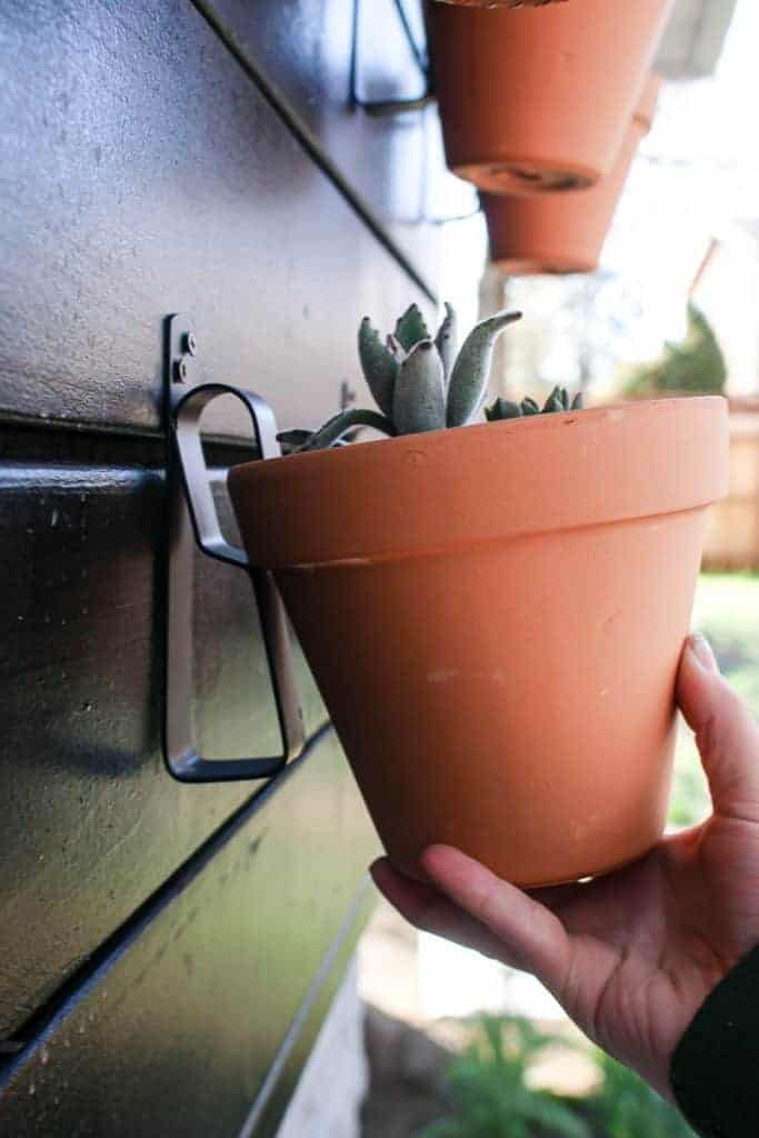 shows a hand hanging a small terra cotta clay pot to a wooden plant wall with a metal pot hanger