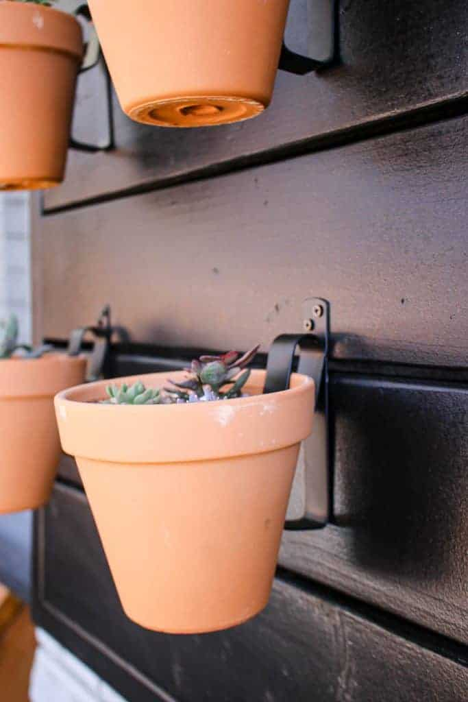 shows an up close picture of a couple terracotta pots with succulents hanging on a black wood wall