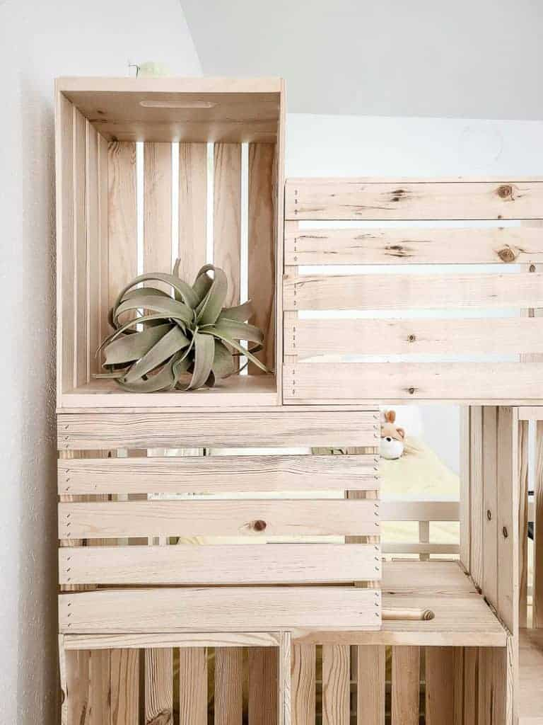 shows an up close picture of the wood crate bookshelf wall with a plant in one of the crates