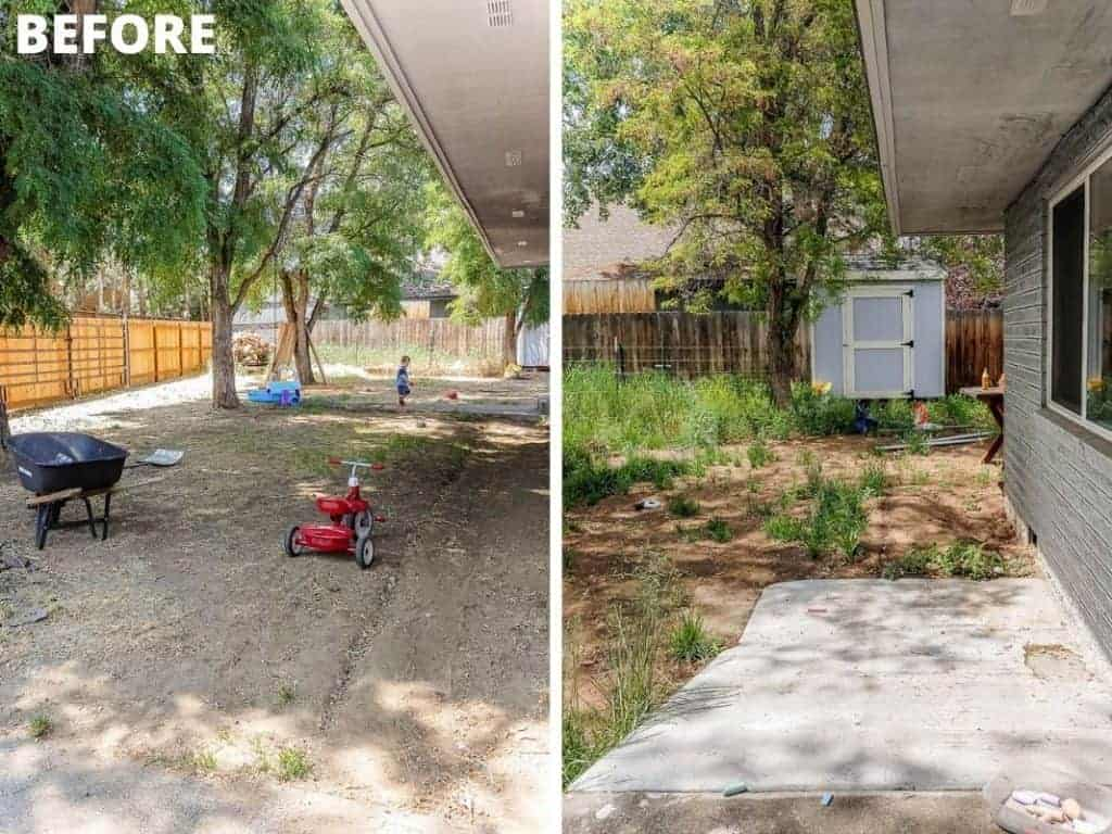 shows a before photos of the backyard