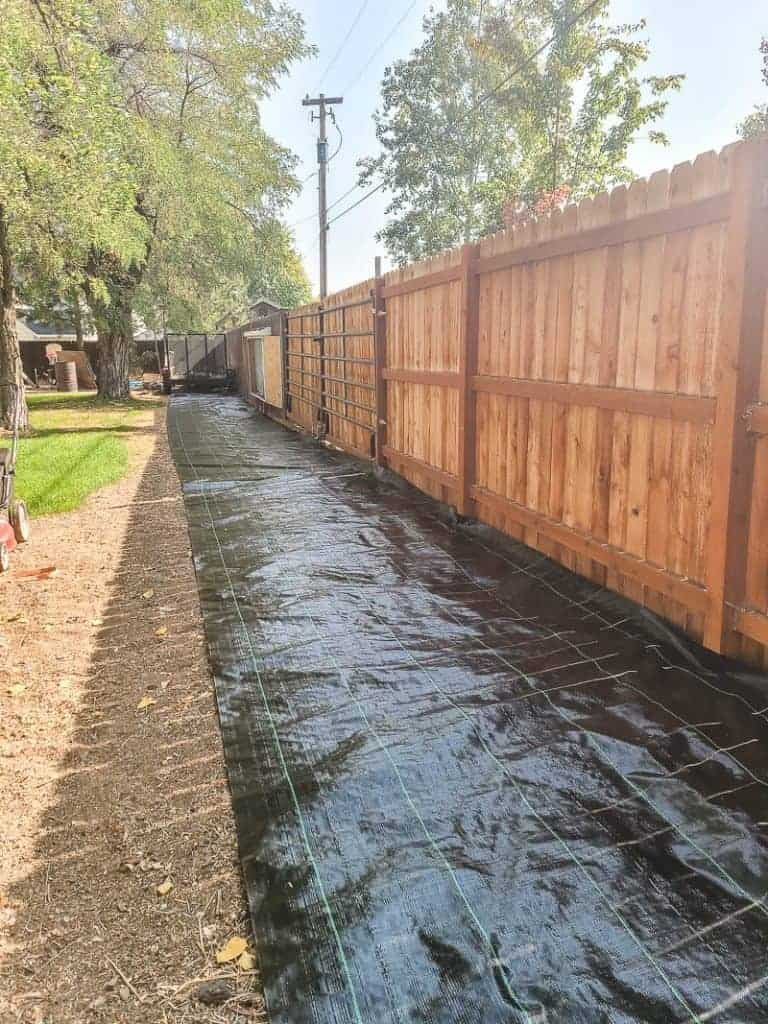 Landscape fabric laid out along edge of fence in backyard before putting down gravel