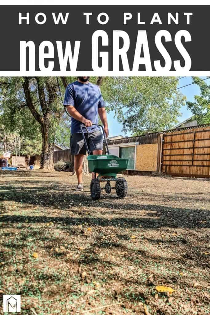 Man in backyard planting new grass seed in soil with text overlay that says how to plant new grass