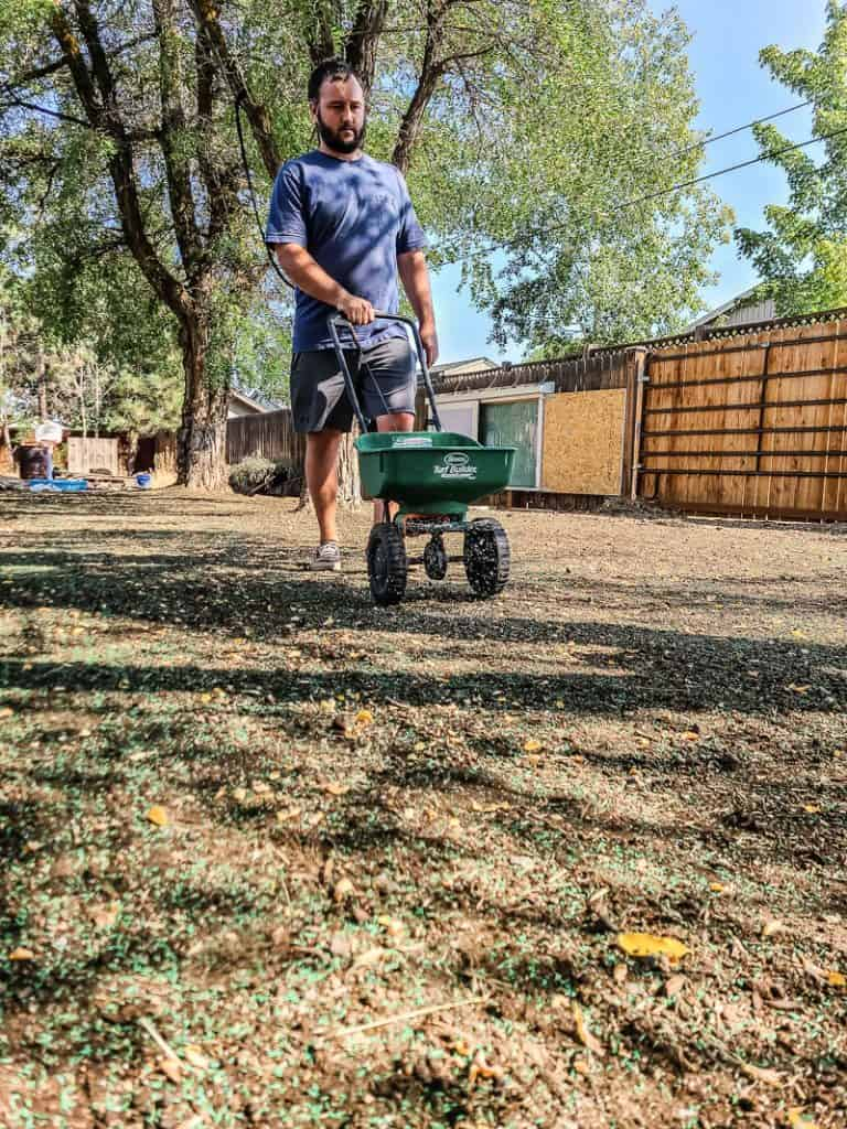 shows a man spreading grass seed in back yard with rotary spreader