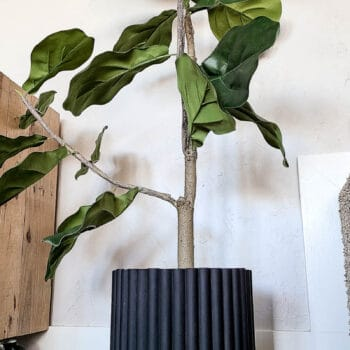 shows a fluted textured plant cover with a tree in it