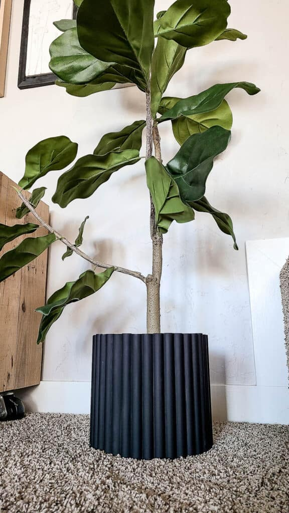 shows tree with a black fluted textured planter