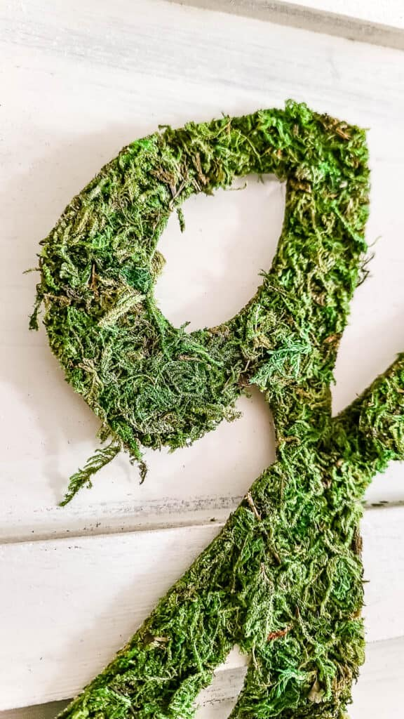 shows a G cut out of moss
